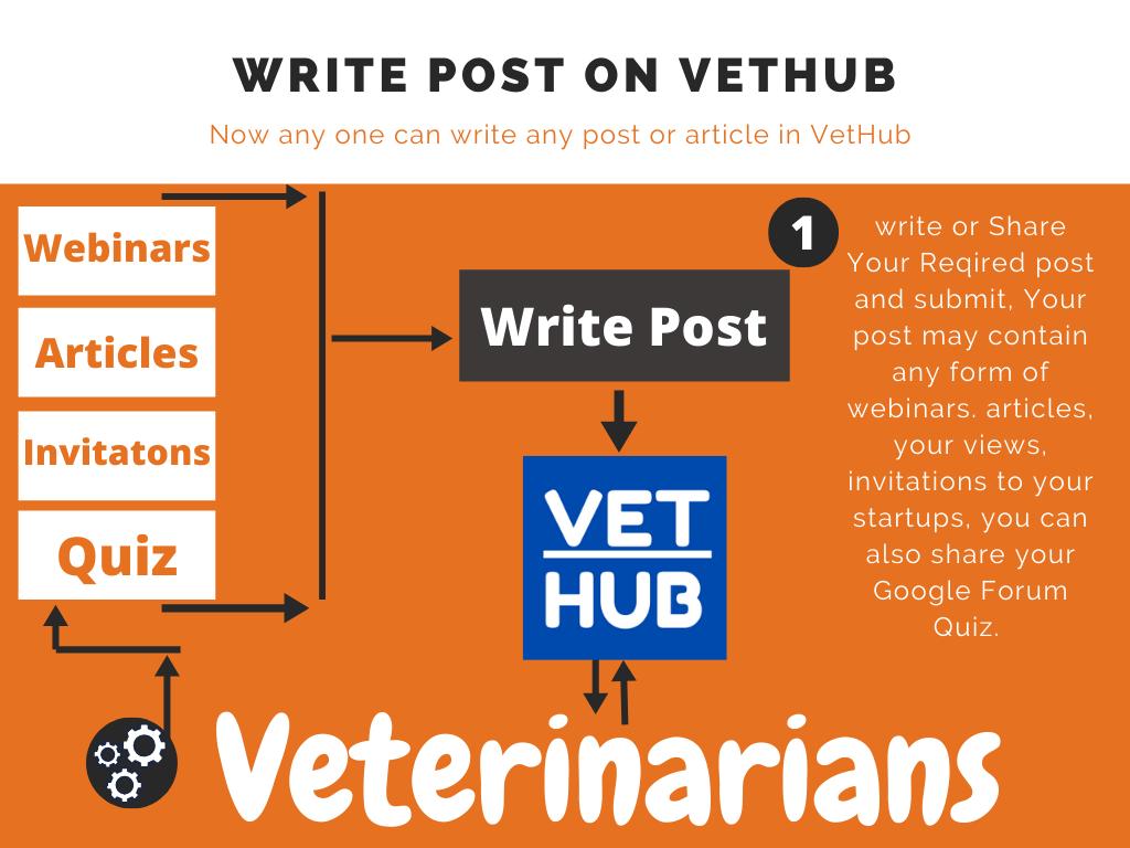 Write post on VetHub • Write Post