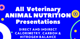 All Veterinary ANIMAL NUTRITION Presentations