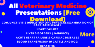 All Veterinary Medicine Presentations [Free Download]