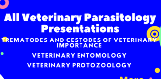 All Veterinary Parasitology Presentations