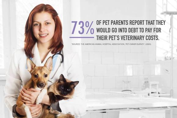 Should You Invest in Pet Insurance?