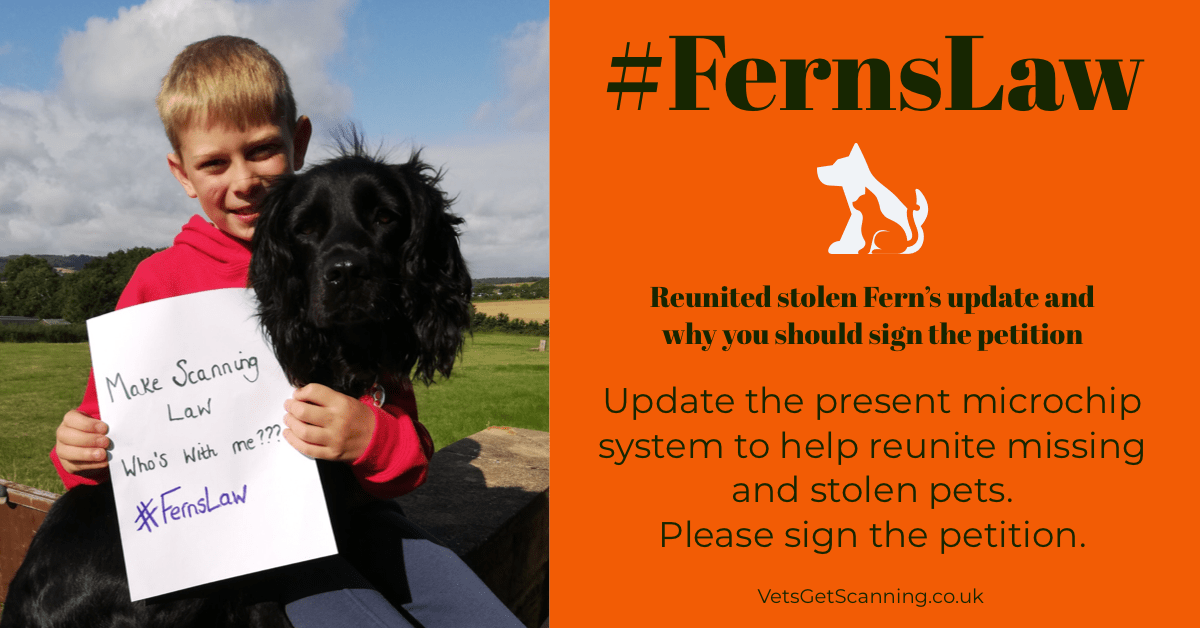 #FernsLaw: Update from Jodie and why Fern is the figure head to help all missing microchipped pets