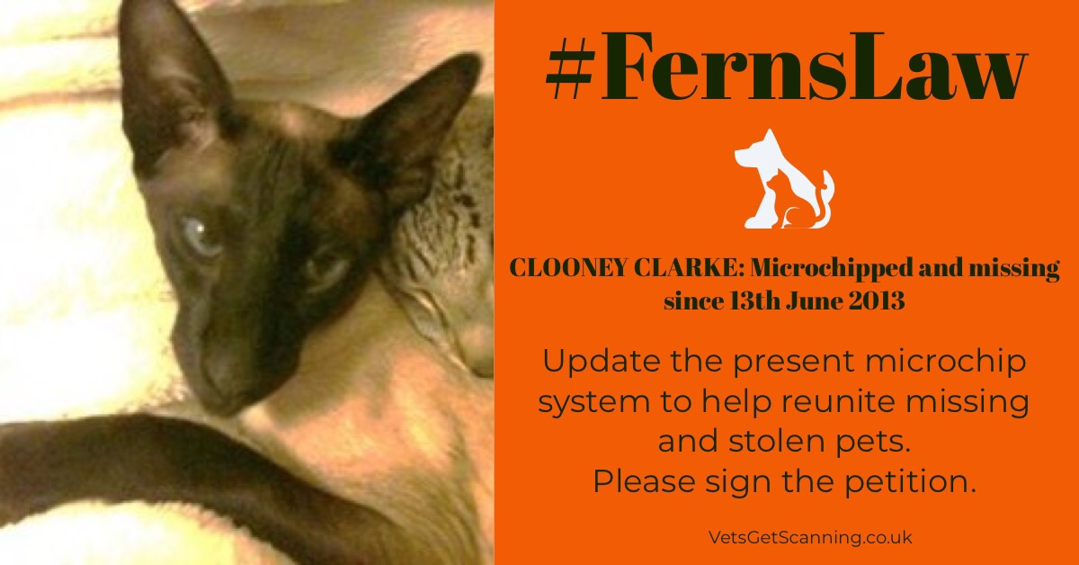 If #FernsLaw was implemented I could have Clooney back in my arms and our lives complete.