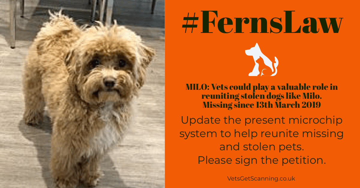 #FernsLaw petition to help stolen microchipped dogs like Milo get home.