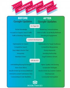 Google Before and After Updates