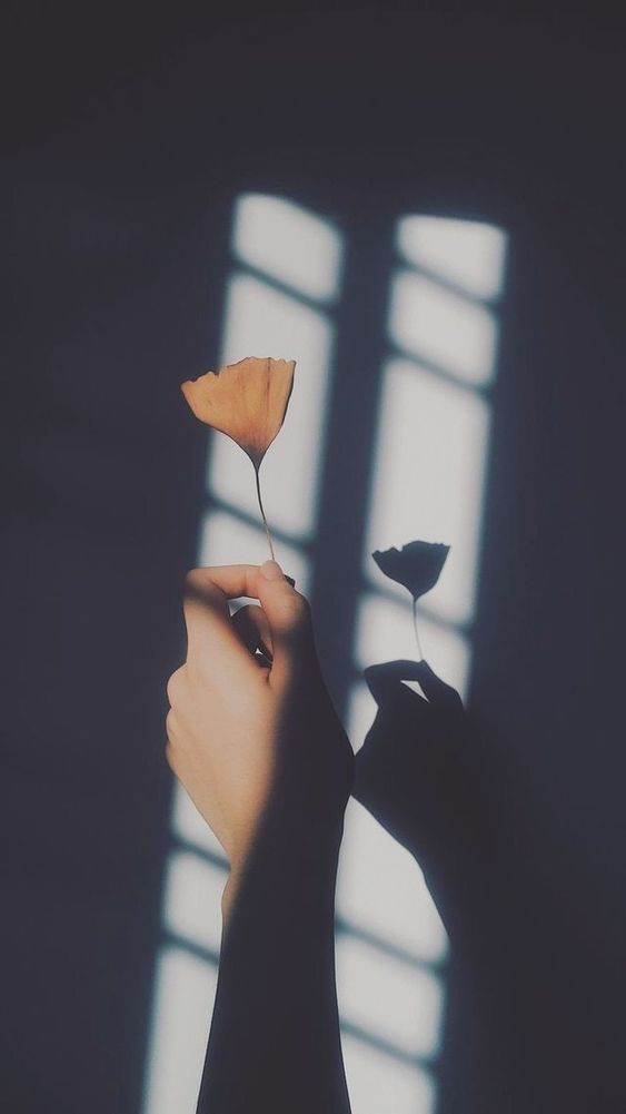 09/10/2021· kumpulan foto profil wa kosong aesthetic terbaru 2021 bakamitai in 2021 creative profile picture whatsapp profile picture profile pictures instagram. Foto Profil Wa Keren Dan Aesthetic Terbaru 2021 Vexagame