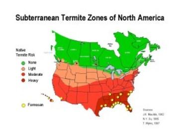 Termite Map