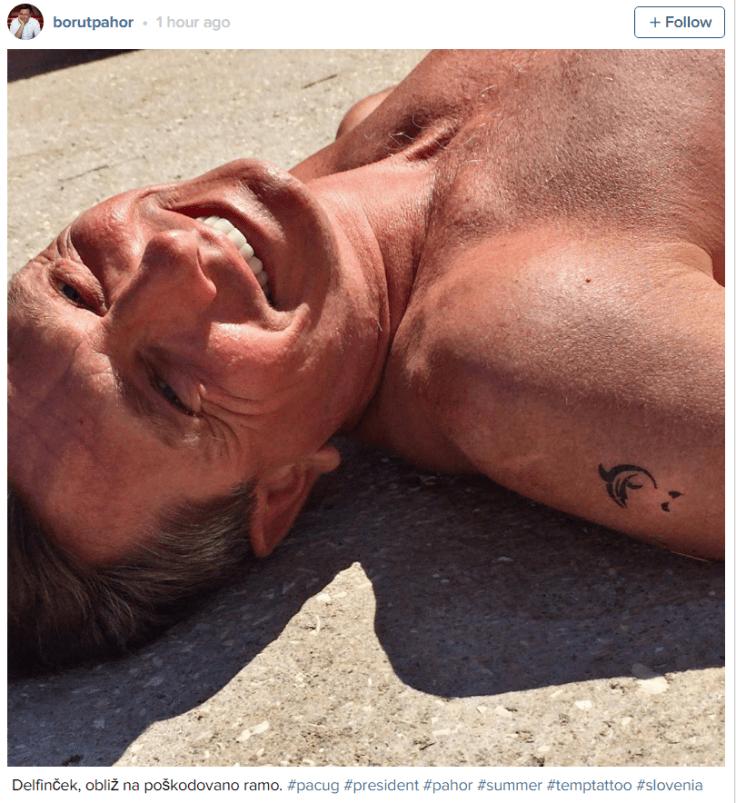 Pahor delfinček