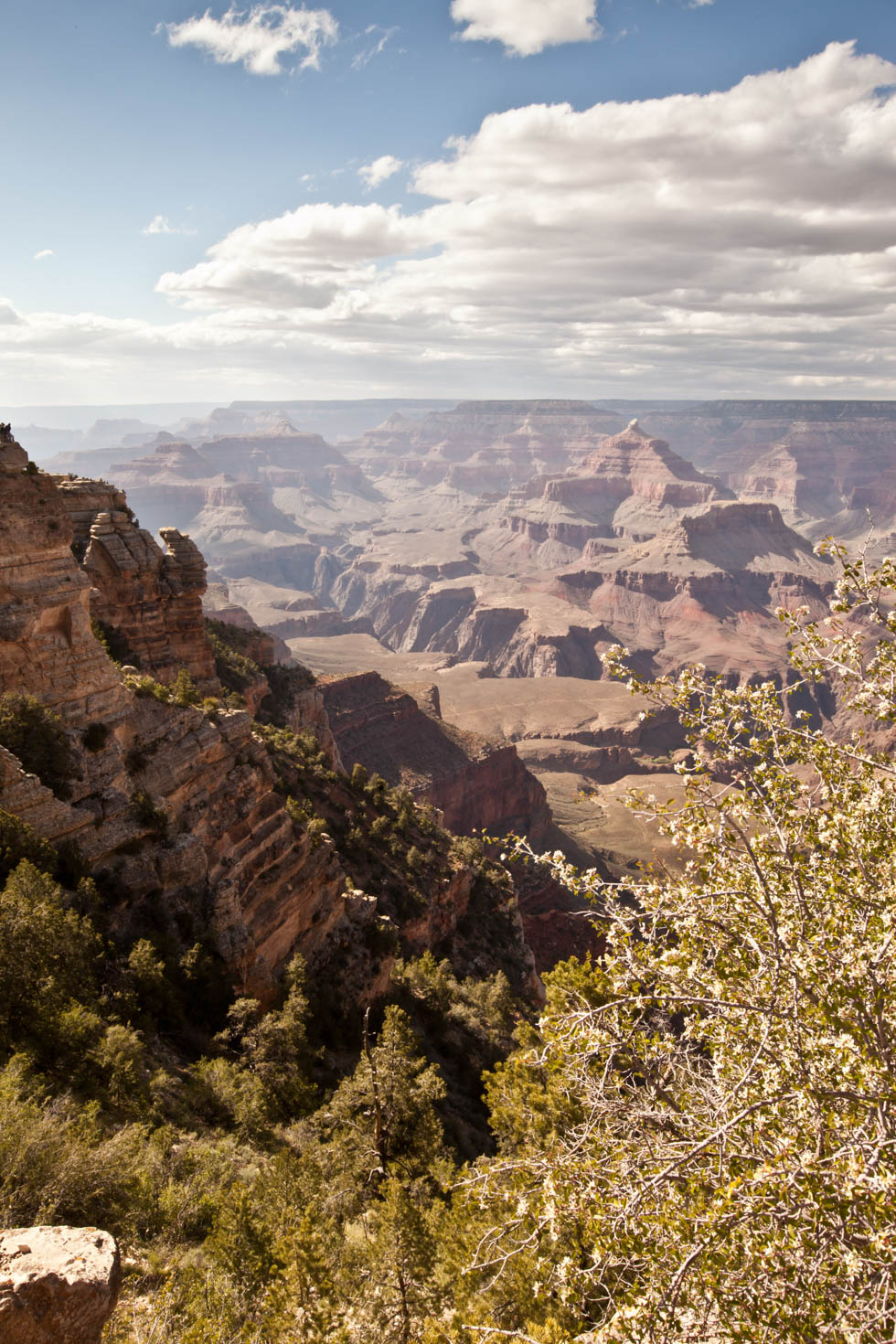 Grand Canyon National Park, Arizona #vezzaniphotography