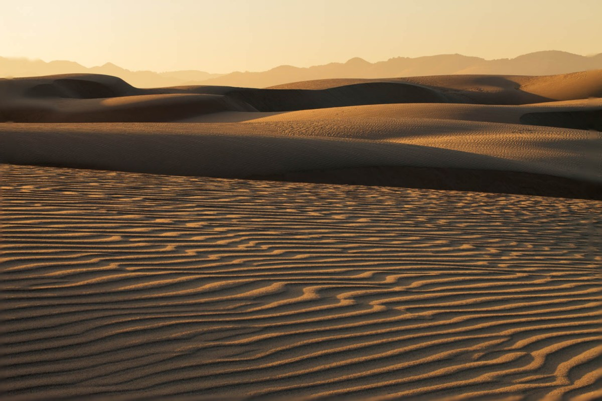 Sand Dunes, Pismo Beach State Park, California #vezzaniphotography
