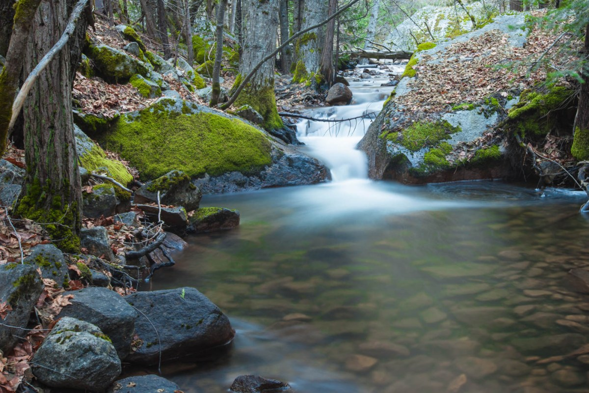 Tenaya Creek on the Mirror Lake Trail at Yosemite National Park #vezzaniphotography