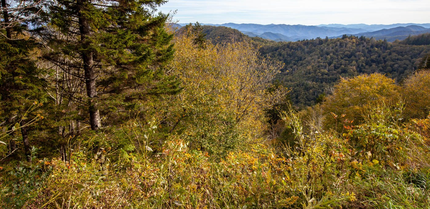 See the Newfound Gap Overlook at Great Smoky Mountains National Park