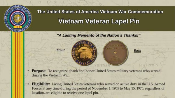 Vietnam Veteran Lapel Pin - VFW Post 8870 and Auxiliary