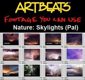 ARTBEATS - NATURE SKYLIGHTS (PAL)