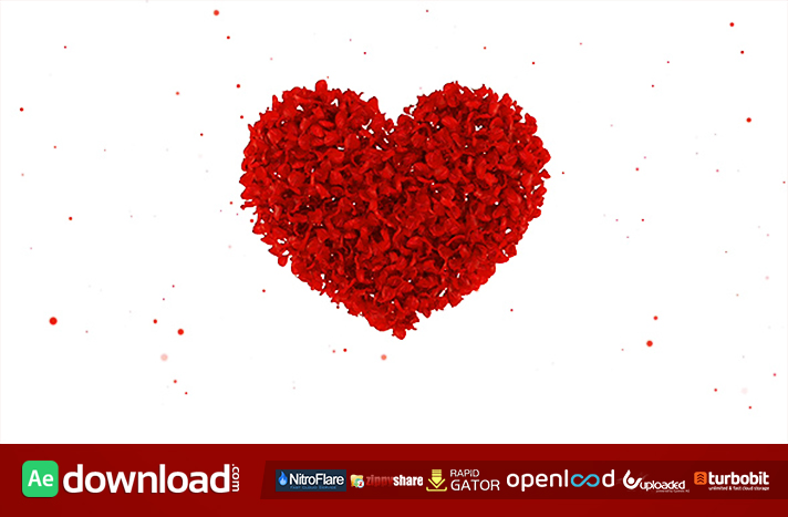 WEDDING ALBUM RED ROSES - AFTER EFFECTS PROJECT (VIDEOHIVE) - Free ...
