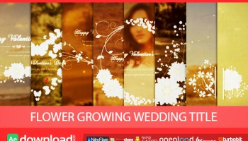 DIAMOND GLITTER TITLES VIDEOHIVE TEMPLATE FREE DOWNLOAD - Free After