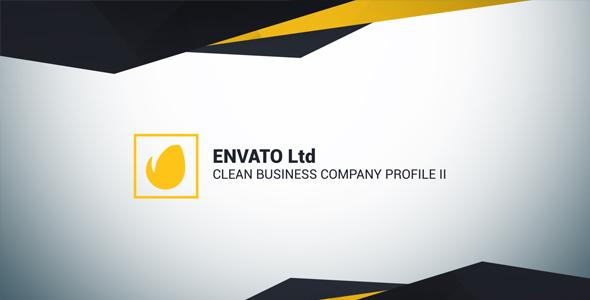 VIDEOHIVE CLEAN BUSINESS COMPANY PROFILE II  Company Profile Free Template