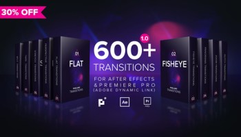 VIDEOHIVE HANDY SEAMLESS TRANSITIONS - PREMIERE PRO - Free