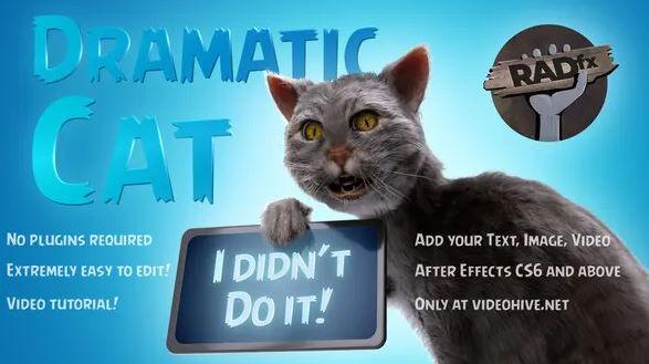 Funny Dramatic Cat