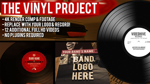 The Vinyl Record Project