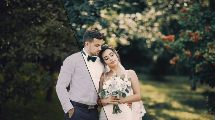 Adobe Exchange - 50 Wedding LUTs (Look Up Tables)