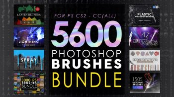 Creativemarket 5600 Photoshop Brushes Mega Bundle 5825386
