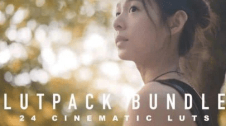 Sellfy - LutPacks Bundle (ALL 24 LUTs) HungKai Chen (HKC)