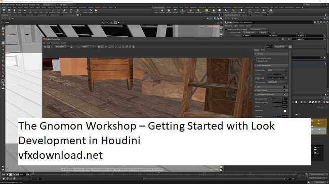 The Gnomon Workshop – Getting Started with Look Development in Houdini