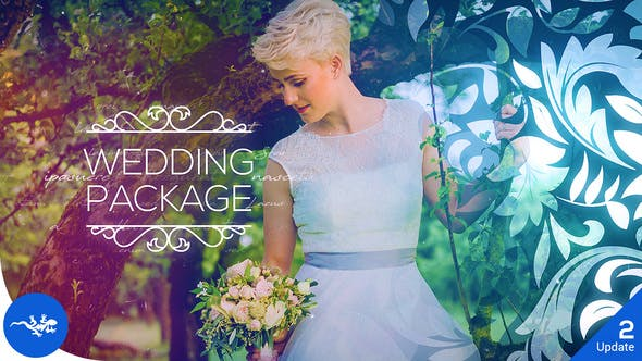 Videohive Wedding Package V2 22669041