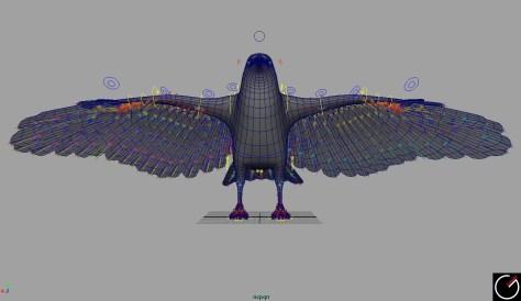 Bird_003