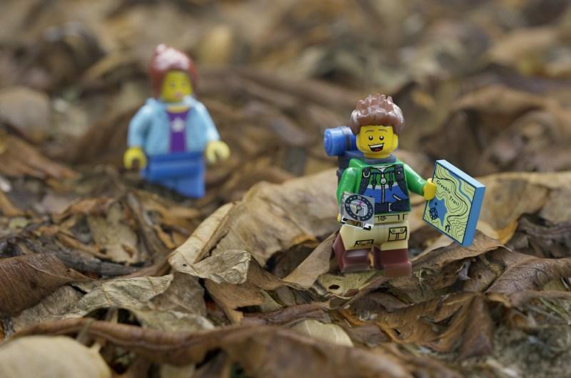 Arnold_lego-render_Image-courtesy-of-Lee-Griggs