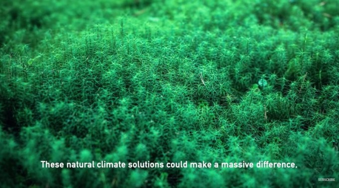 climate solutions - using nature