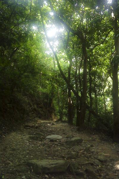 Cerro El Avila  (5/6)