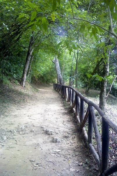 Cerro El Avila  (4/6)