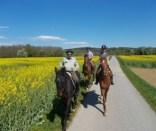 Etappe5(8 Tag)Strecke-Neudau–Fürstenfeld-18