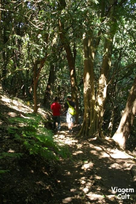 Cerro Verde El Salvador