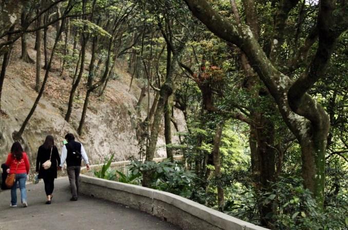 Trilha na região do The Peak, em Hong Kong
