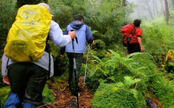 Trilhas em Puyuhuapi (foto: Puyuhuapi Lodge & Spa / Divulgação)