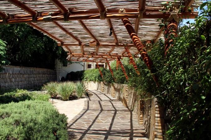 Jardim das Ervas, espaço ao ar livre que conta com uma horta com mais de 15 tipos de ervas que servem para decorar e dar sabor aos pratos preparados durante as aulas (foto: Eduardo Vessoni)