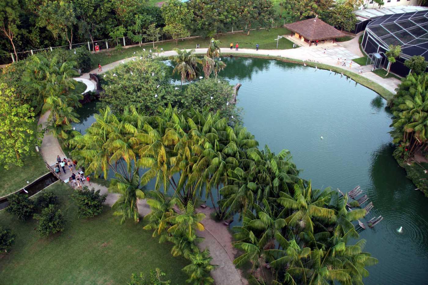 Vista aérea do Mangal das Garças, em Belém (foto: Eduardo Vessoni)