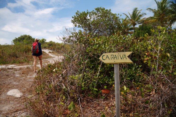 Vista do trekking, entre a Praia do Espelho e Caraíva, no sul da Bahia (foto: Eduardo Vessoni)