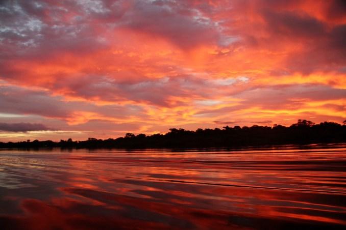 Final de tarde na Amazônia (foto: Eduardo Vessoni)
