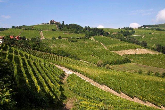 Le Langhe: Itália Secreta para visitar