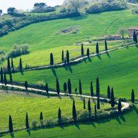 Serviços turísticos em Florença: excursão para o Chianti
