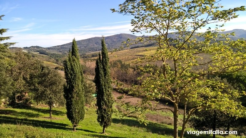 Origem do nome Toscana, Itália.