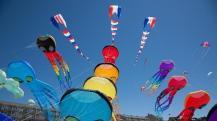 kite-fest1