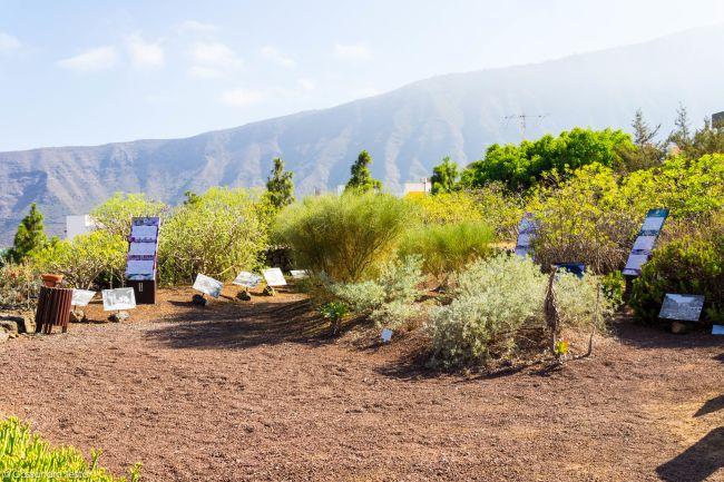 Rotta canaria, Piramidi di Guimar, Tenerife