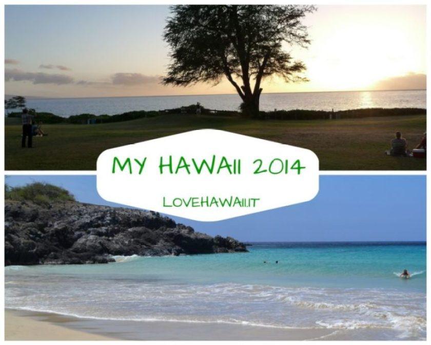 My Hawaii 2014