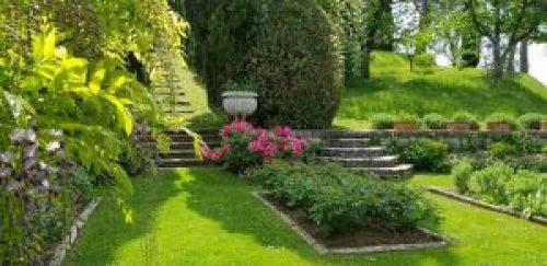 Villa La Foce il giardino delle rose e un tralcio di glicine