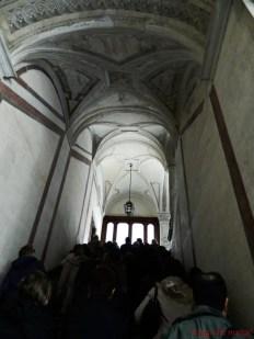Gruppo di visitatori sulla scalinata di Palazzo della Prefettura.